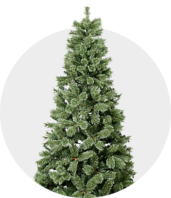 Shop Christmas Trees