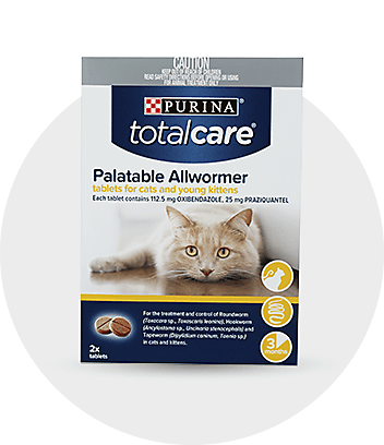 Cat Flea, Tick and Worming