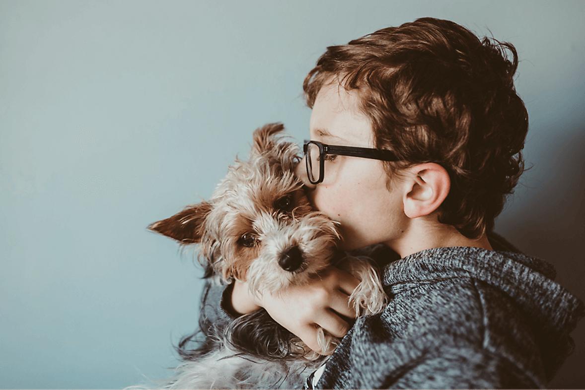 Tips on Pet Adoption