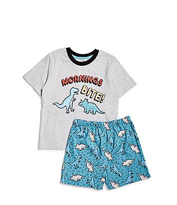 Boys Grey & Blue Dinosaur Pyjama Set