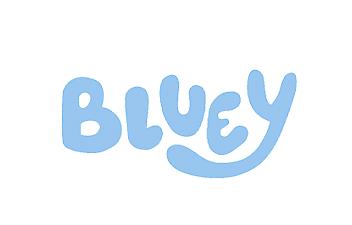 bluey brand