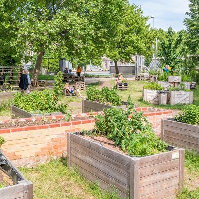 Vienna, Austria - May 23, 2016: People in Karlsgarten, research garden for urban agriculture on Karlsplatz in Vienna, Austria