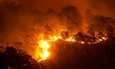 Over 24 million hectares were burnt  and tragically 33 lives were lost during Australia's worst bushfires on record