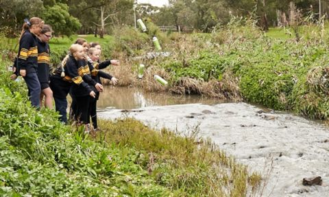 Children throwing litter trackers into a creek.