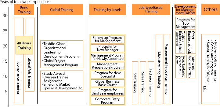 Talent Development Program Roadmap (Toshiba Group in Japan)