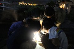 Appreciating fireflies with local children